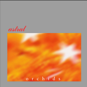 astral - orchids